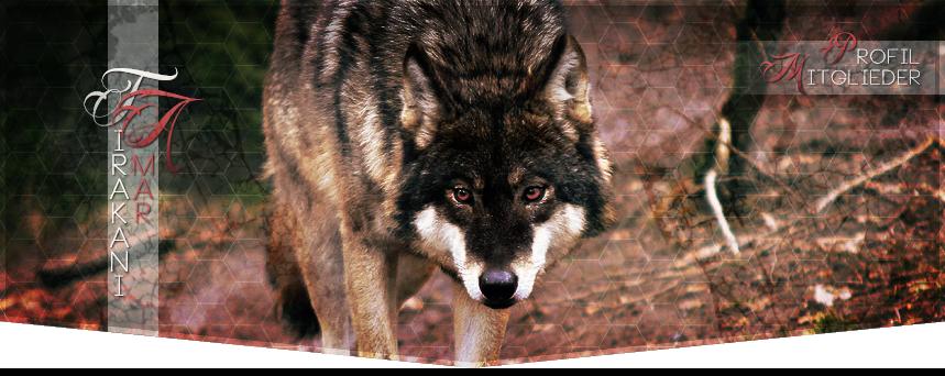 auch du stirbst einsamer wolf
